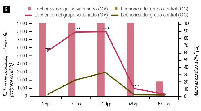 porcentaje de animales seropositivos a Pasteurella multocida