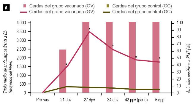Título medio de anticuerpos frente a Bordetella bronchiseptica