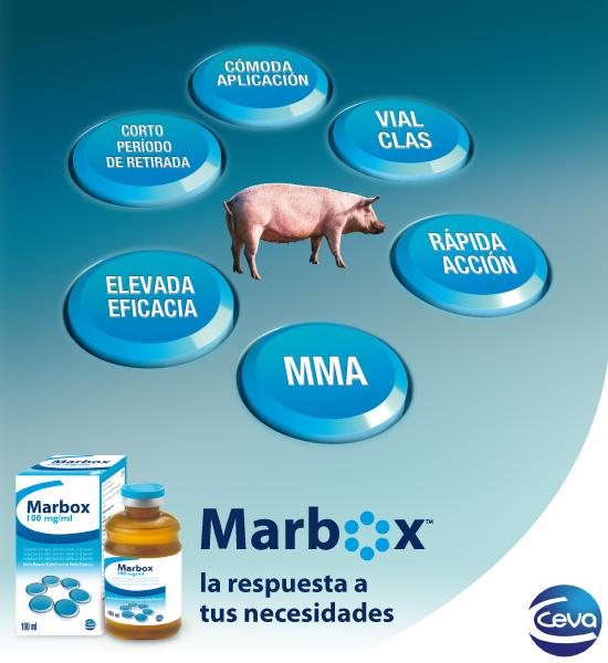 Marbox: cómoda aplicación, vial, clas, rápida acción, mma, elevada eficacia, corto período de retirada