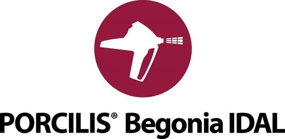 Porcilis® Begonia IDAL