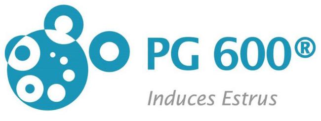 PG 600