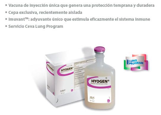 Hyogen, Un nuevo estilo frente a Mycoplasma hyopneumoniae