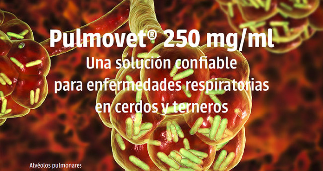 pulmovet-250