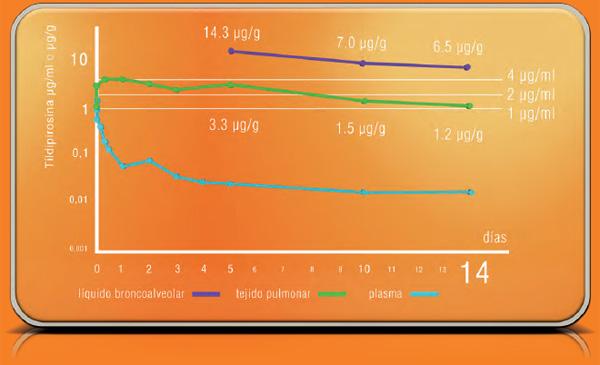 Concentración de Tildipirosina en plasma, pulmón y líquido broncoalveolar, tras la aplicación de 4 mg/Kg p.v. de Tildipirosina.