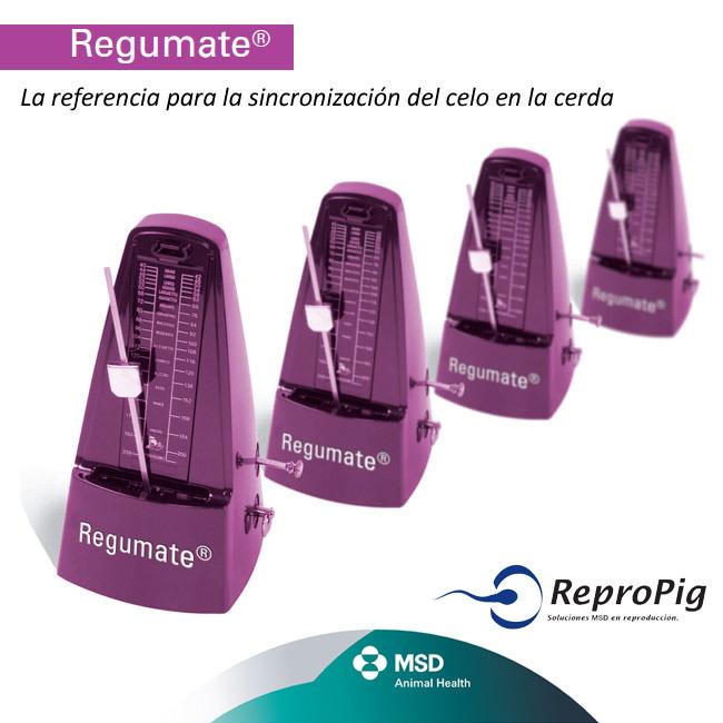 Regumate