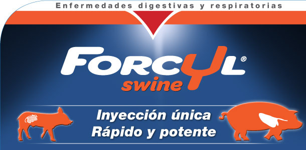 Cabecera Forcyl