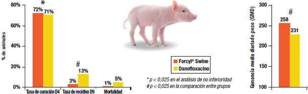 Forcyl® Swine en casos de colibacilosis: lechones más sanos y, por tanto, mayor crecimiento
