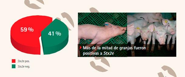 úmero de granjas con detección de E. coli productor de toxina Shiga