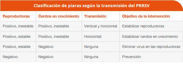 Clasificación de piaras según la transmisión del PRRSV