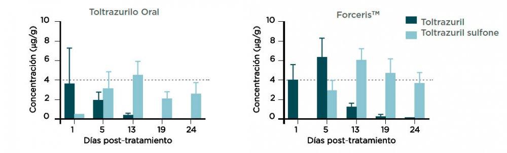 Figura 4. Concentraciones (media + DE) de toltrazurilo y de toltrazurilo sufona en el ileum (mezcla) tras la adminsitración a de una sola dosis de ForcerisTM o Baycox 5% a lechones.