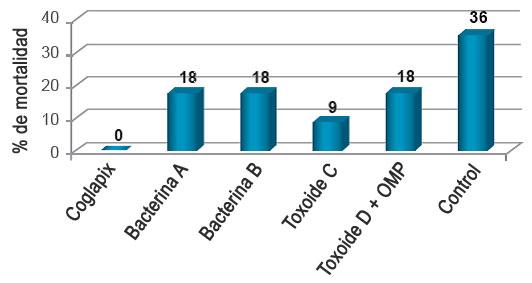 Gráfico 3. Tasa de mortalidad.