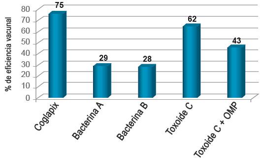 Gráfico 5. Eficacia basada en LLS.