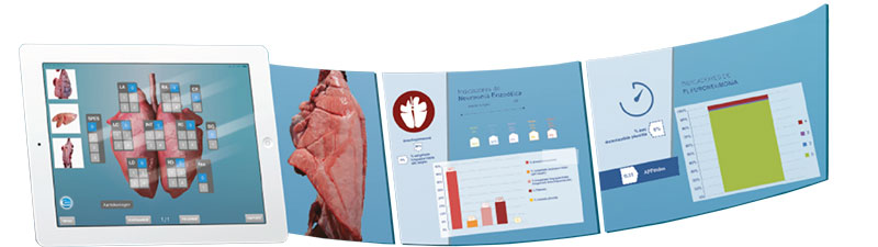 App Ceva lung program