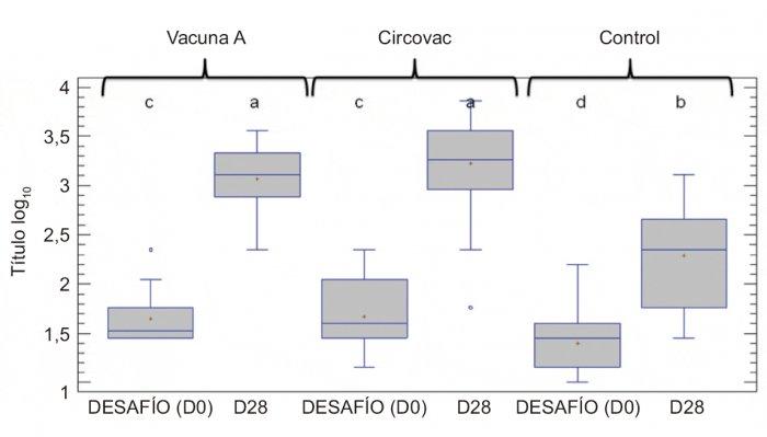 Fig. 1. Títulos de anticuerpos neutralizantes frente al PCV2 antes y después de la exposición experimental al virus