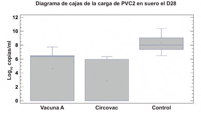 Fig. 3. Carga de PCV2 en suero el D28