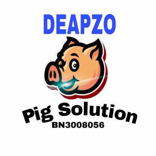 pigsolutions01