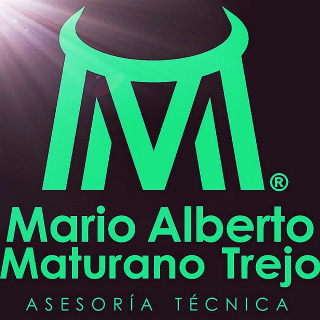 IAP Mario Alber