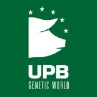 COMMUNITY UPB