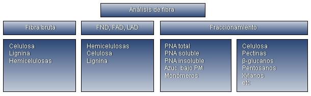 Resumen de las diferentes técnicas analíticas y fracciones de la fibra.
