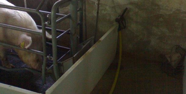 Si se dispone de una manguera en cada sala de partos, suplementar agua varias veces al día es un proceso sencillo
