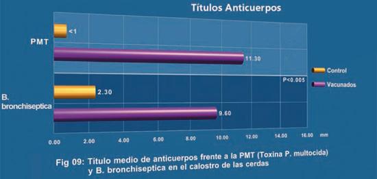 Título medio de anticuerpos frente a la PMT (toxina de P. multocida) y B. bronchiseptica en el calostro e las cerdas.