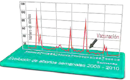 El adecuado control de las cerdas de reposición junto con la vacunación en sábana con Porcilis® PRRS ha logrado una estabilización reproductiva a largo plazo en la explotación