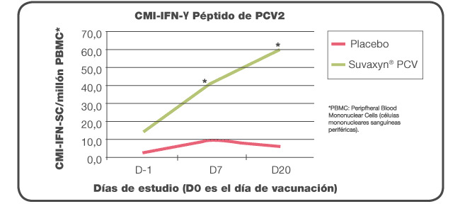 Respuesta celular postvacunación