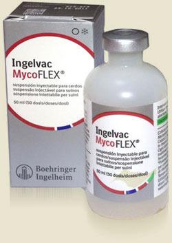 MycoFLEX 50ml
