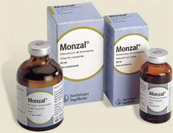 Monzal